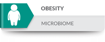 The intestinal microbiome is intrinsically linked with overall health, including obesity risk.